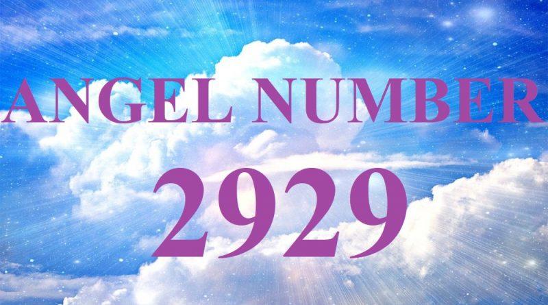 Angel number 2929